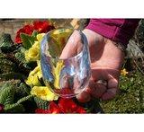 Strahl Osteria onbreekbaar design glas 24.7cl